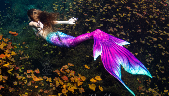 I Took Photos Of A Real Mermaid In An Enchanted Underwater Forest