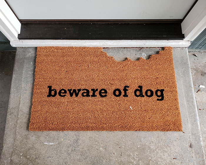 Came Home To A Surprise New Doormat