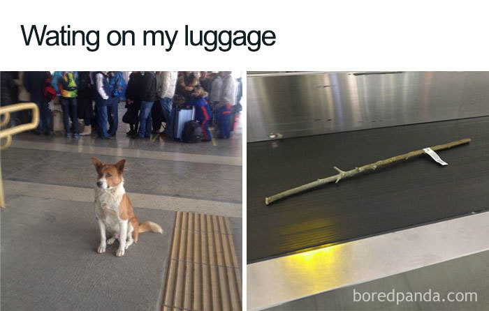 Funny-Travel-Airport-Memes