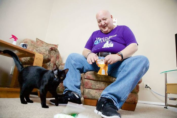 Blake, The Cat That Helps Its Owner Deal With Brain-Induced Seizures