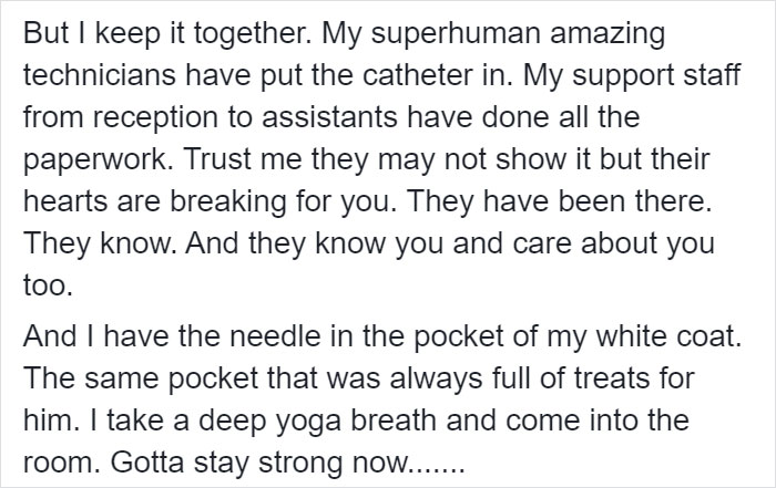 Heartbreaking Post On Euthanasia From A Vet That Has To Perform It Goes Viral