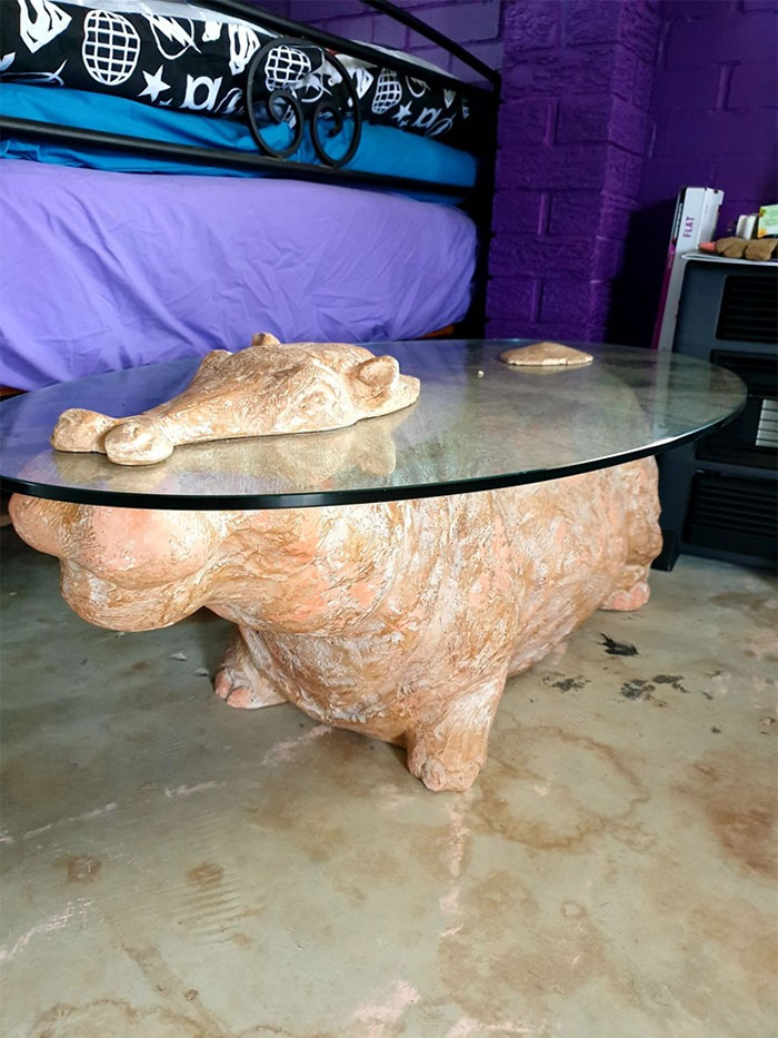 Does This Qualify As A House Hippo?