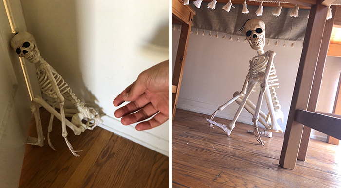 'He Was So Terrified When We Brought Him Home 2 Days Ago:' Man 'Rescues' An Abandoned Skeleton Decoration
