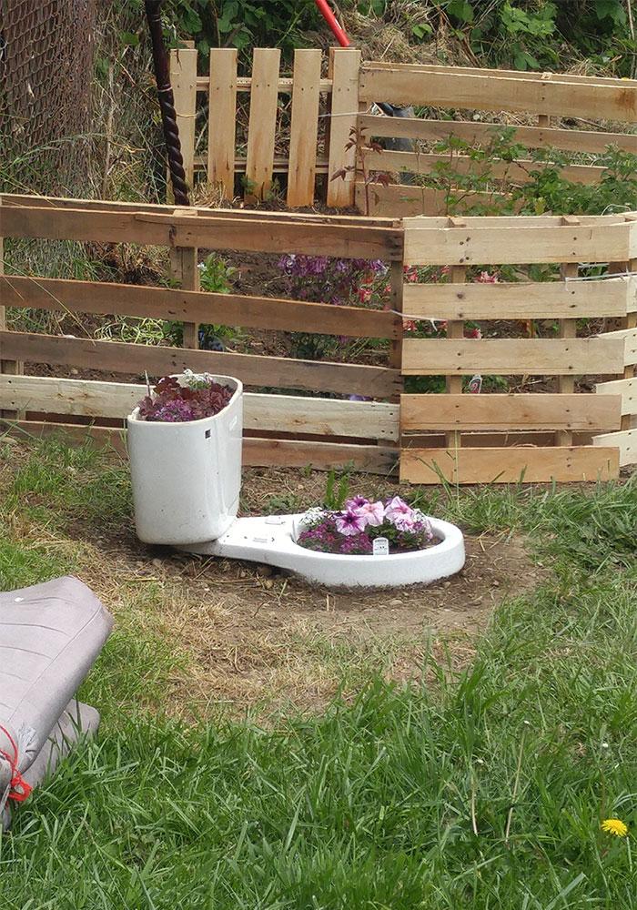 A Repurposed Toilet