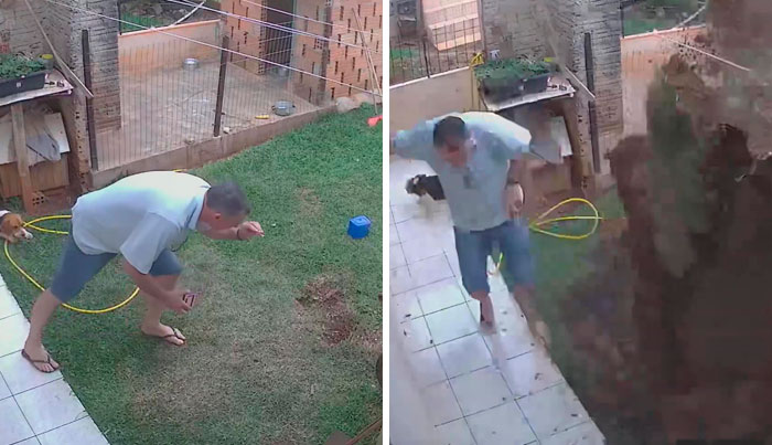 Man Accidentally Blows Up His Entire Backyard While Trying To Get Rid Of Cockroaches