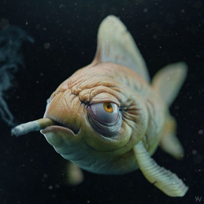 The Junkie Fish