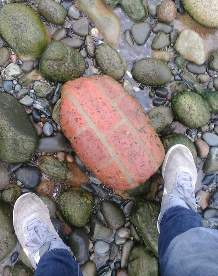 I Was In Ireland Two Years Ago And Found This Piece Of A Brick Wall That Had Been Shaped By The Surf