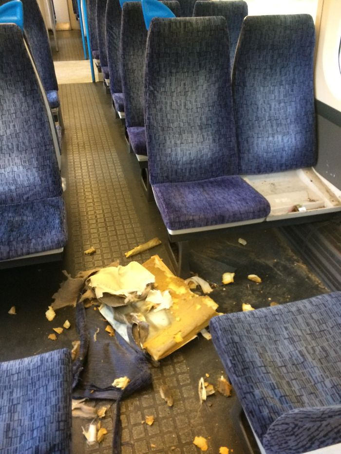 Chav Let His Dog Tear Apart The Seats On The Train