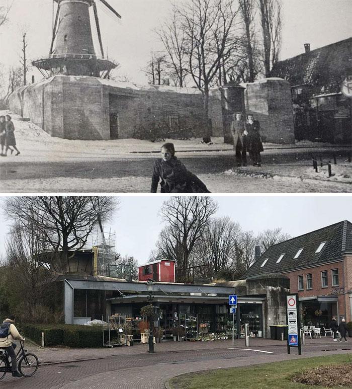 Old Bunker Alkmaar Flower Shop