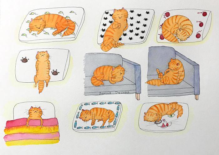 Nine Ways Of Sleep