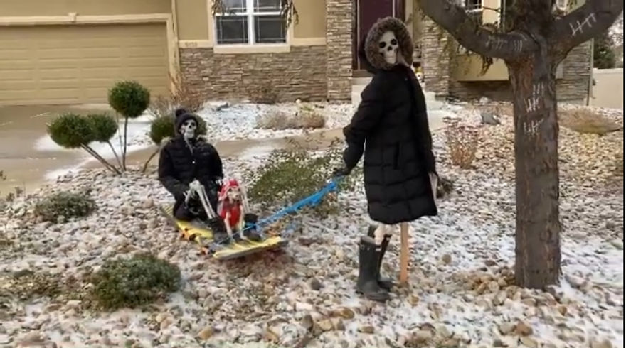 Dashing Through The Snow, In A One Human Open Sleigh!