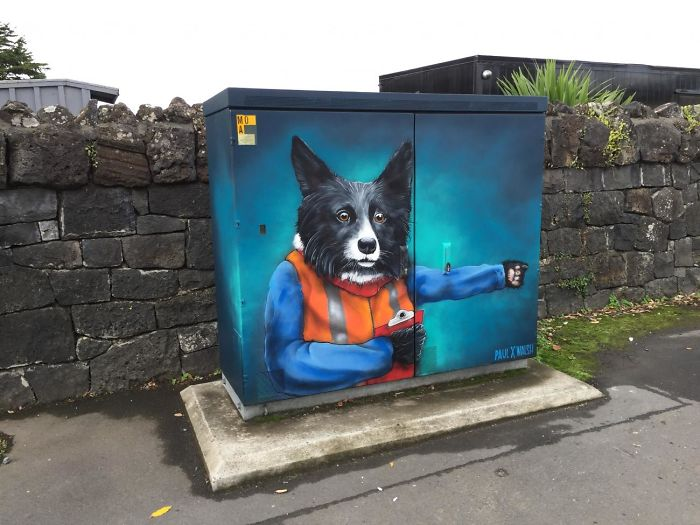 """""""The Modern Working Dog"""" By Paul Walsh"""