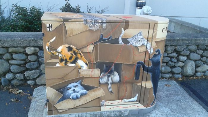 """My Cat Likes To Hide In Boxes"" By Viv Walker"