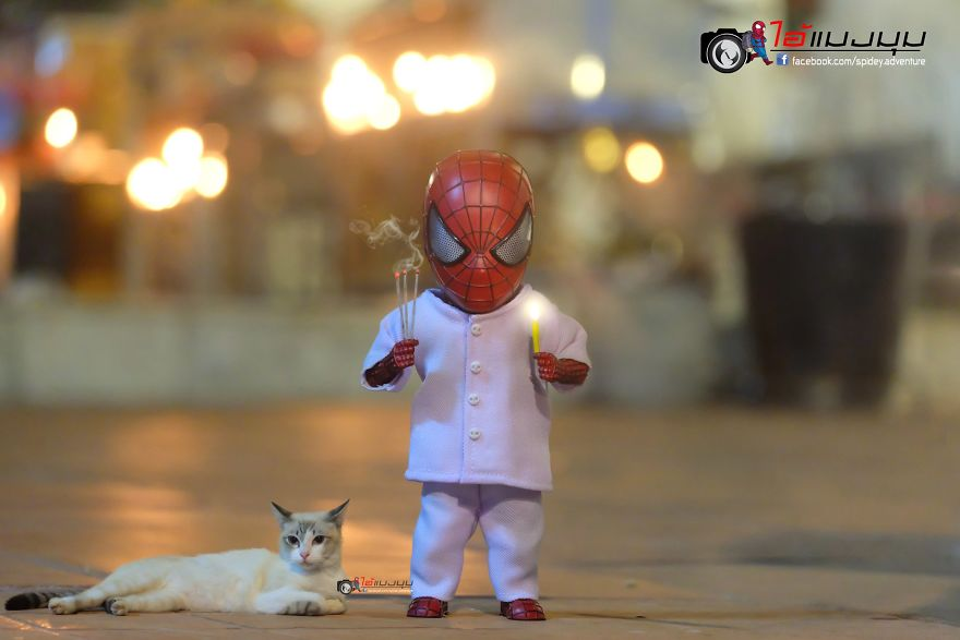 See The Adventures Of A Mini Spiderman With Lovely Cats Created By A Thai Artist