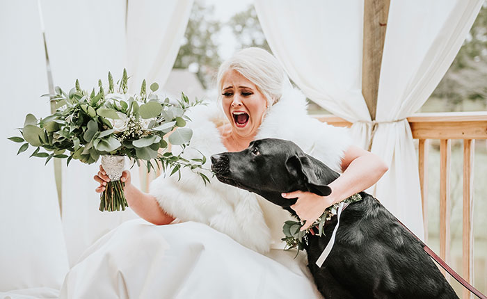 Bride's Decision To Bring Her Dog To Her 'First Look' Photoshoot Makes The Pics Go Viral