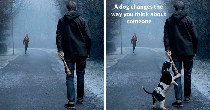 Ad Campaigns Tell How A Dog Can Transform A Person's Life (16 Pics)