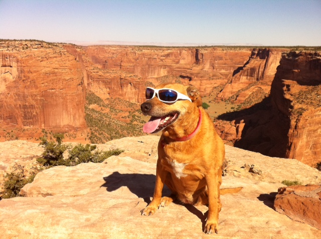 Me And My Girlfriend Visited Canyon De Chelly With Our Funky Dog