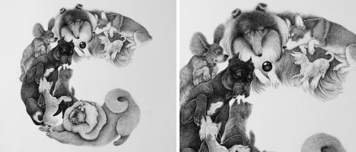 An Alphabet Of Dogs – My Illustrated Book
