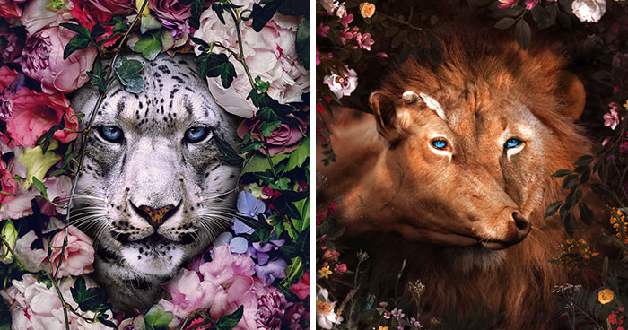 My 38 New Surreal Images That I Created To Raise Awareness About Speciesism