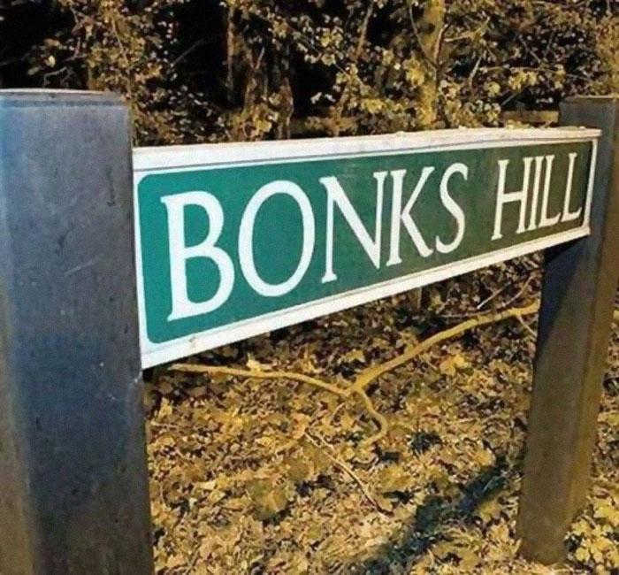 Bonks Hill