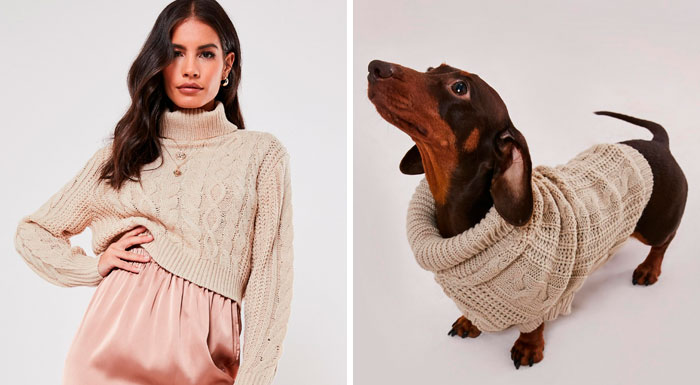 This Clothing Brand Started Selling Matching Sweaters For Dogs And Their Owners And They're Adorable