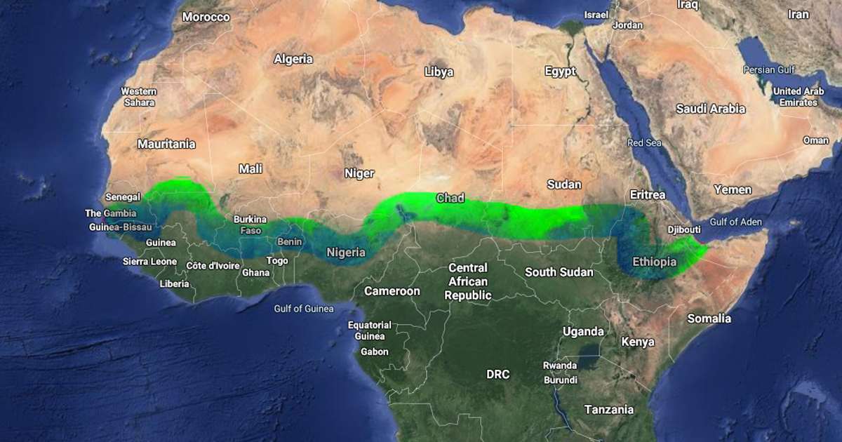 "Over 20 Countries Have Started Building An 8,000KM ""Great Green Wall"" To Stop Climate Change And Desertifi"