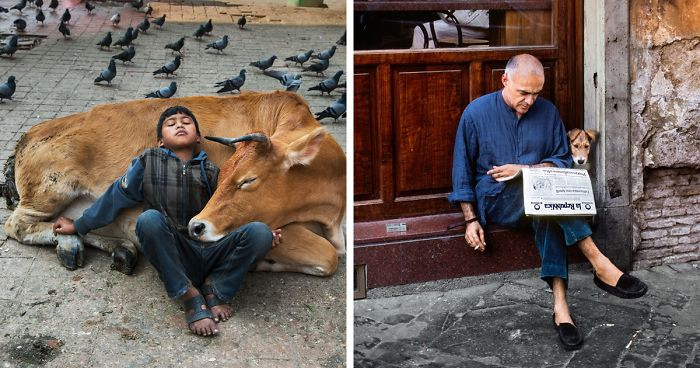 71 Stunning Photographs That Explore The Intricate Relationship Between Animals And Humans By Steve McCurry