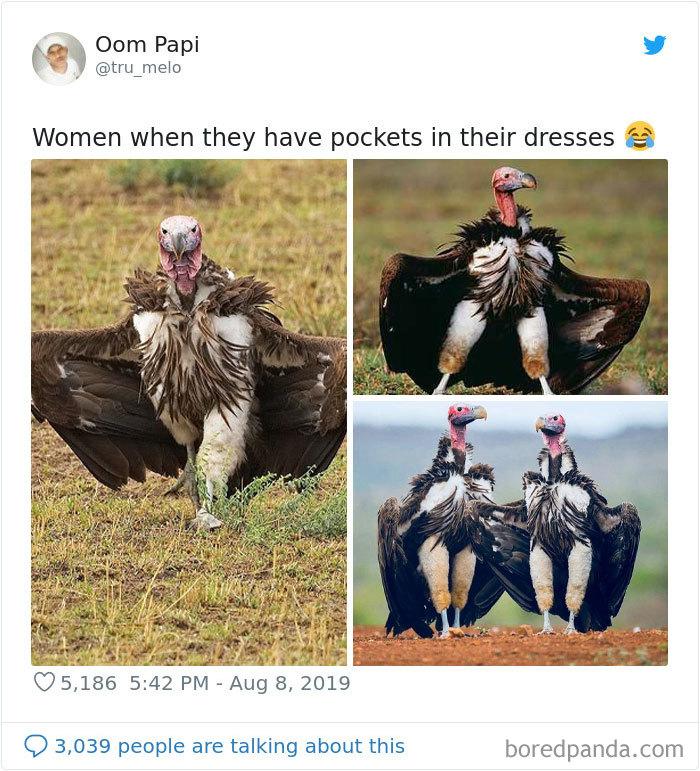 Women-Demand-Pockets-Memes