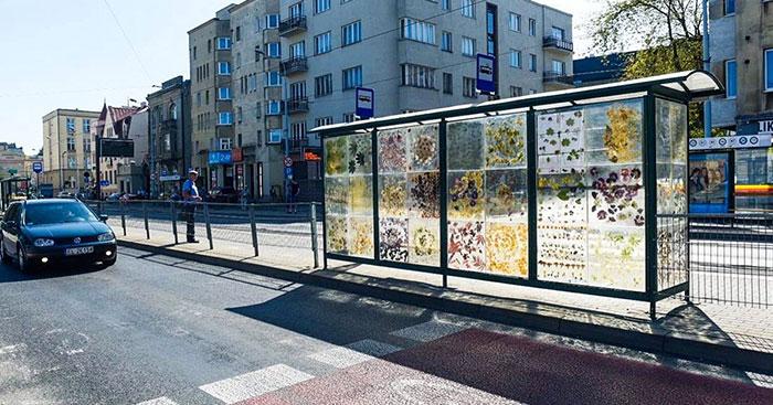 Polish Artist Turns An Ordinary Tram Stop Into A Beautiful Flower Museum