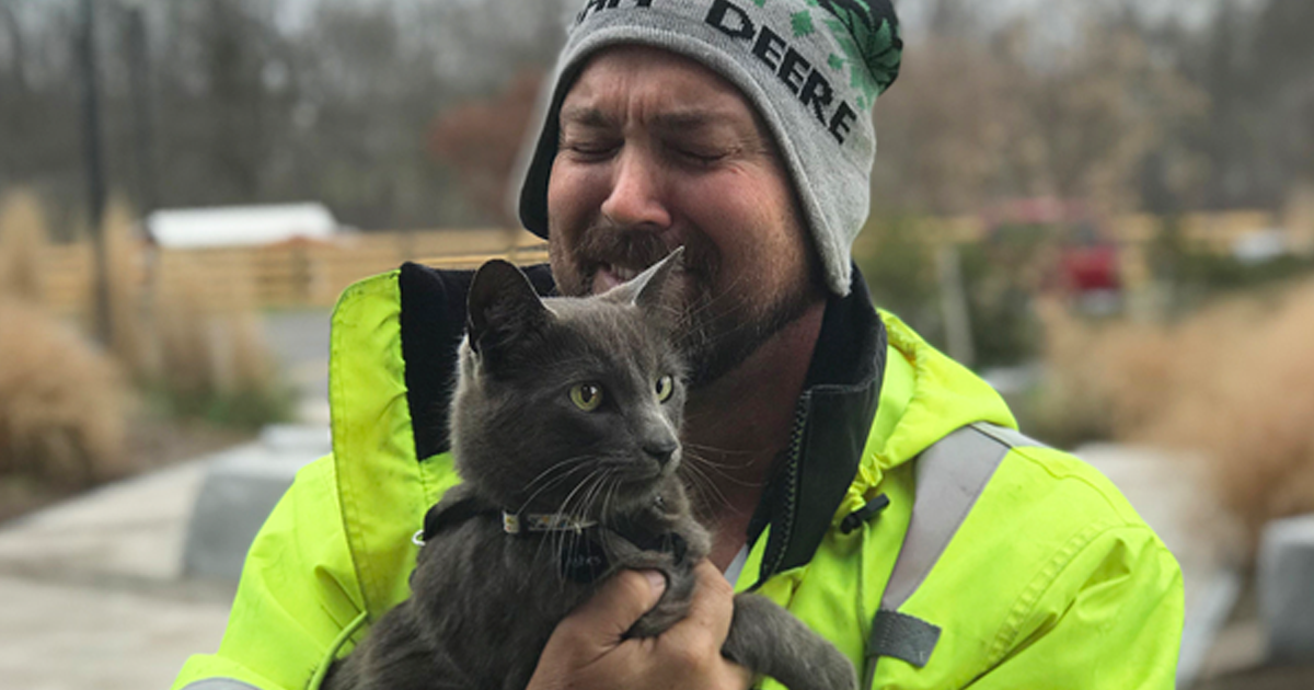 Truck Driver Breaks Into Tears After Reuniting With His Travel Buddy-Cat He Lost Months Ago