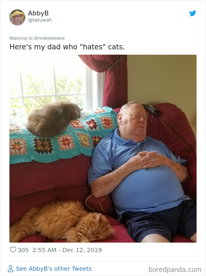 Parents-Didnt-Want-Cat-Now-Loves-Them