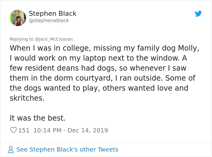 4 Guys Beg Their Neighbor To Let Them Play With Their Dog, Get A Wholesome Letter In Response