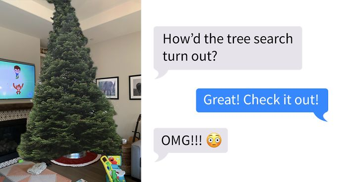 Dad Goes Christmas Tree Shopping Without Mom Decides To