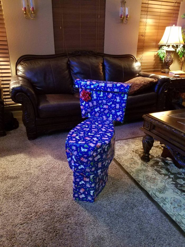 Every Year I Try To Disguise My Sister's Christmas Present. This Year I Think I Went A Little Too Far