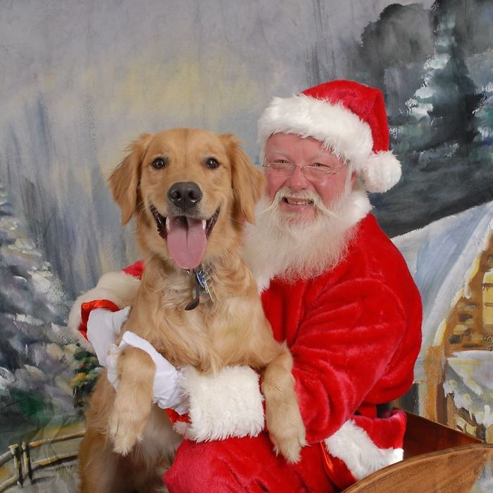 My Friend Brought Her Dog To See Santa Recently