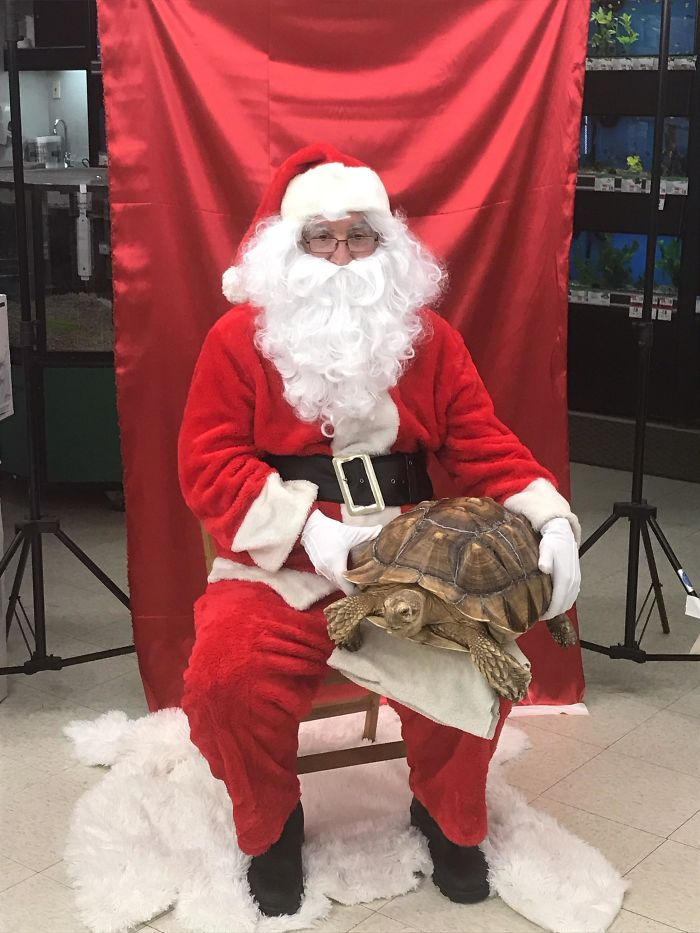 My Dad Was Santa At Our Local Petsmart, Was Not Expecting This