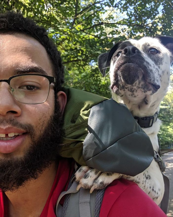 This Is Floyd. He Was Born With Cerebral Hypoplasia Which Means He Can't Walk Too Well. Today We Found Out He Fits In My 75 Liter Hiking Pack, So We Got To Take Him On His First Hike! He Seemed To Really Enjoy It