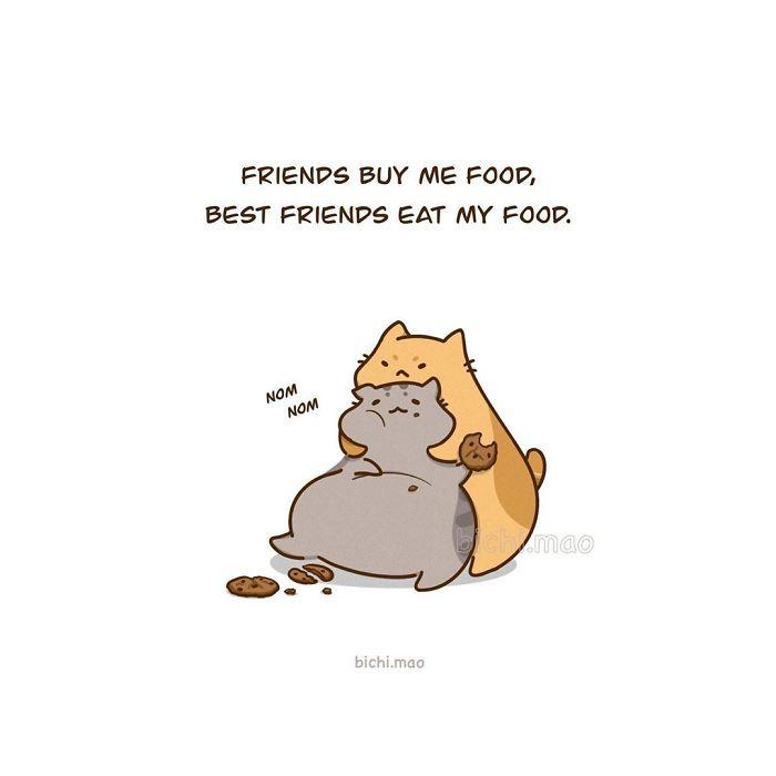 Artist Illustrates Cats With Attitude In Wacky Daily Life Scenarios!