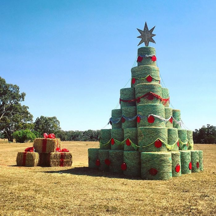 Granjero con un árbol de Navidad muy específico