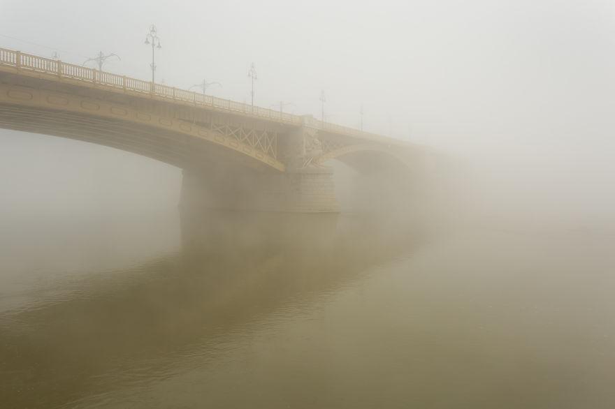 Margaret Bridge, 2014