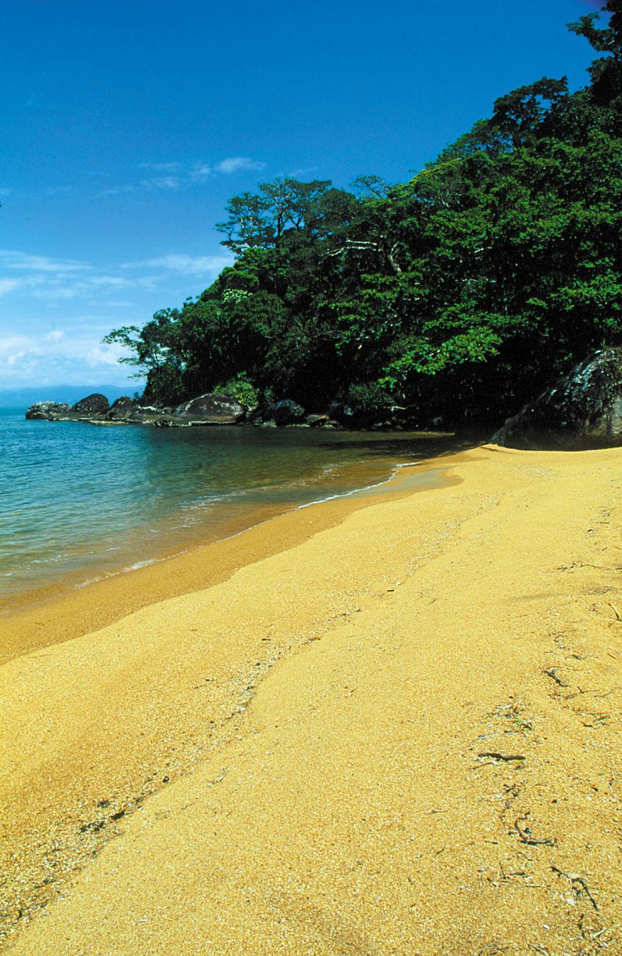 Nosy Mangabe Yellow Beach