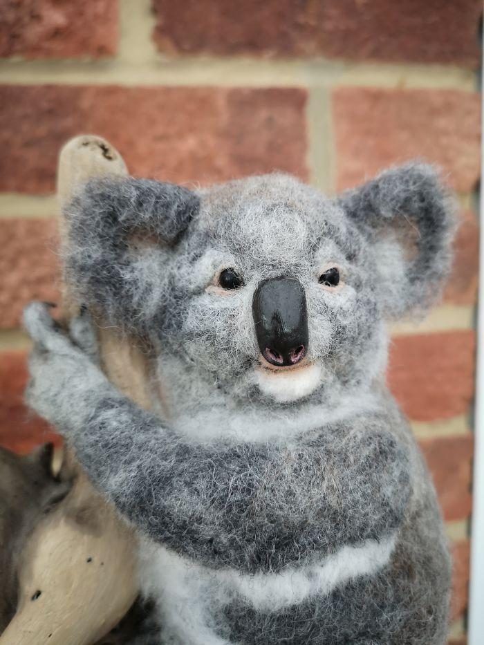 My Koala Piece Mounted On Beautiful Drift Wood Tree.