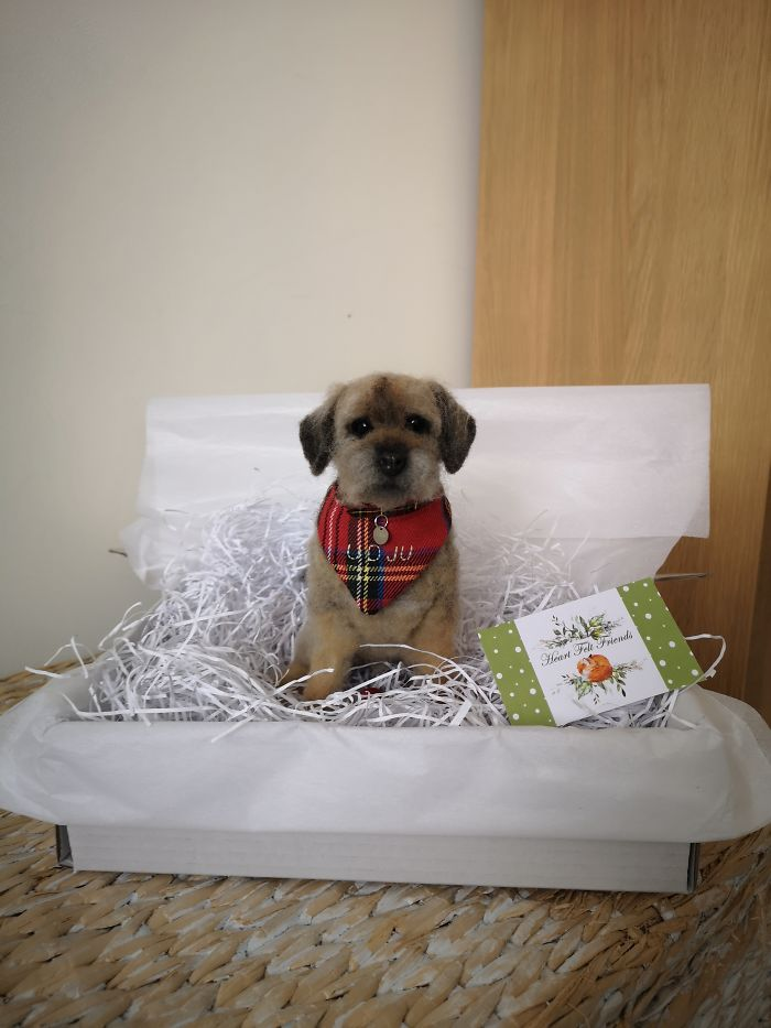 Border Terrier Replica Sitting In His Wee Box
