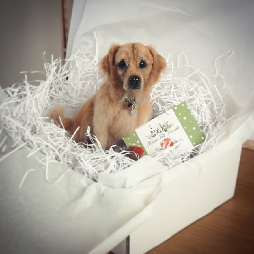 Goldie In A Box...