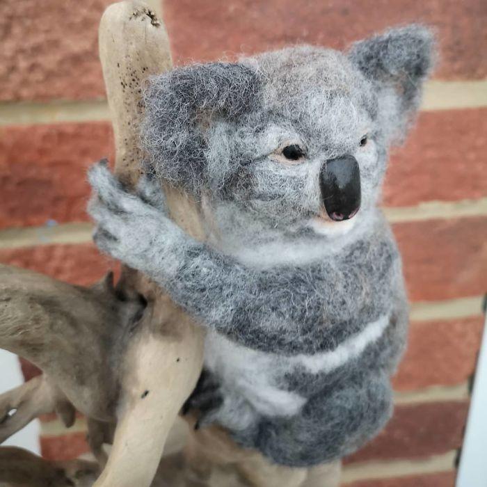 My Detailed Koala..
