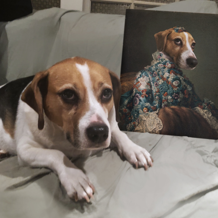 Everybody Is Getting Renaissance Portraits Of Their Pets