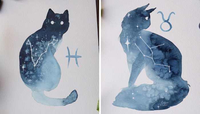 I Painted Twelve Zodiac Sign Constellations As Cats
