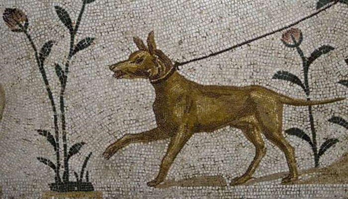 Ancient Greeks And Romans Mourned And Buried Their Dogs