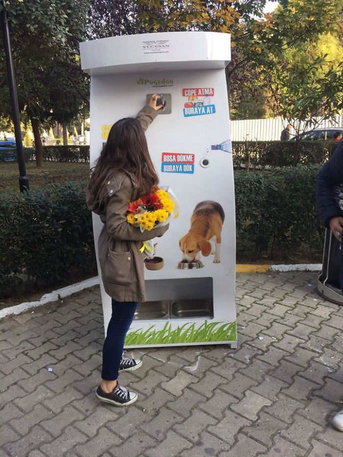 There Are Vending Machines For Dogs