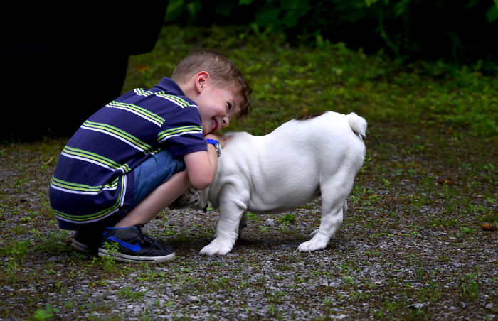 """Dogs Love The High-Pitched """"Baby Talk"""" Some People Do When Interacting With Them"""